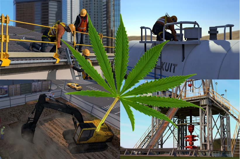 Cannabis / Marijuana in the Workplace Image