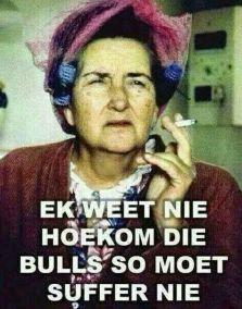 bulls meme