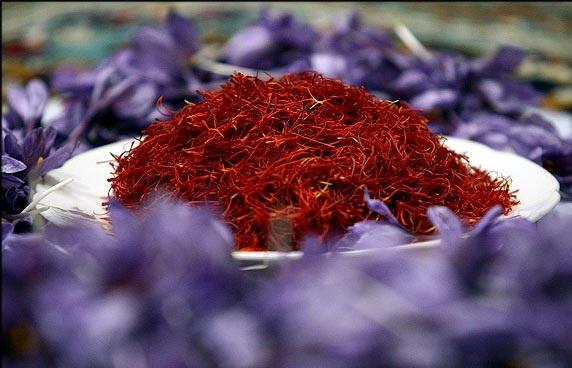 ایران همچنان بزرگترین صادرکننده زعفران است,قیمت زعفران,صادرات زعفران,زعفران,فروش زعفران,صادرکنندگان زعفران,تولید کنندگان زعفران,زعفران قیمت,زعفران ایران