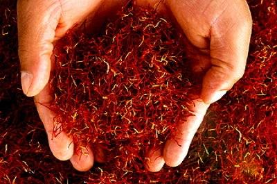 برداشت زعفران,فروش زعفران,صادرکنندگان زعفران,قیمت زعفران,زعفران,صادرات زعفران,زعفران قاینات