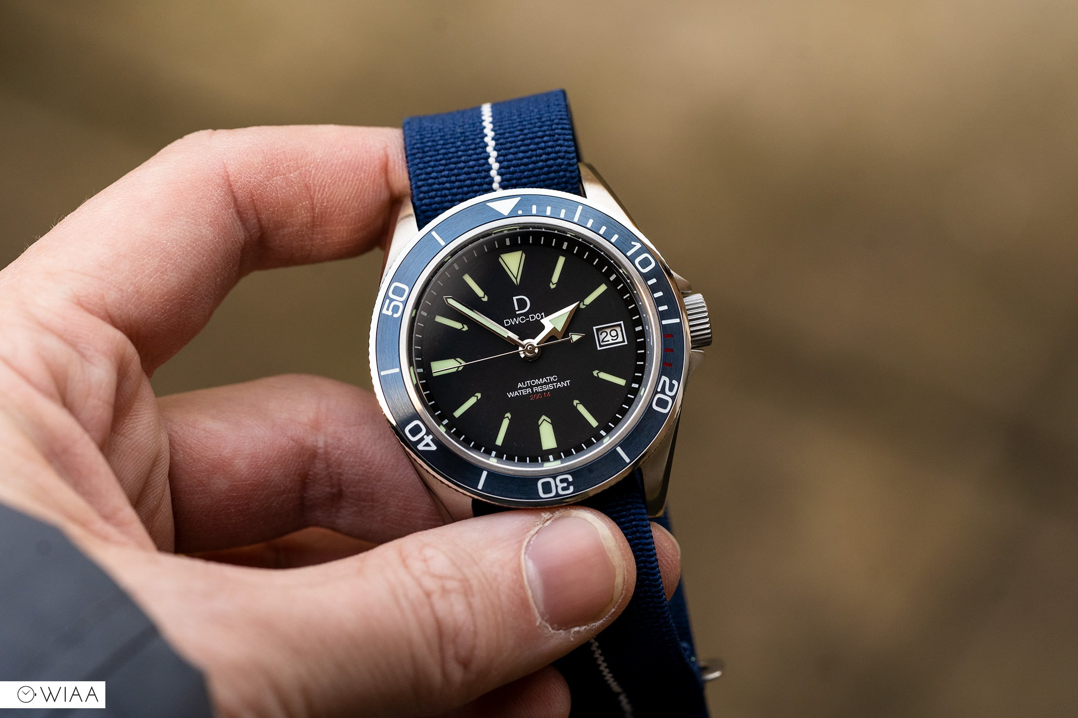 DIY Watch Club Diver Watch Review