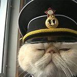 Foto del perfil de timebehindtheironcurtain