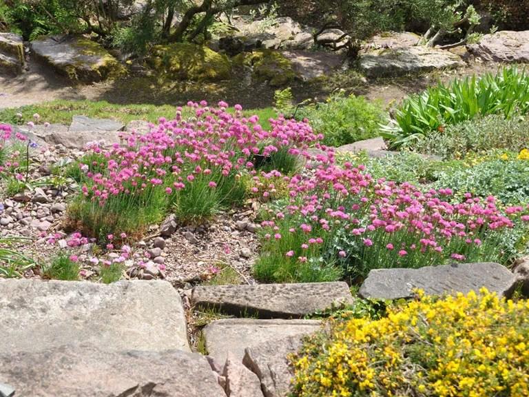 Building Rock Flower Bed