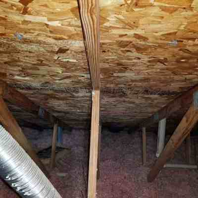 Attic Mold Remediation – Calling in the Pro's