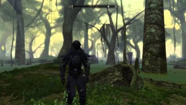 Skywind gameplay screenshot.