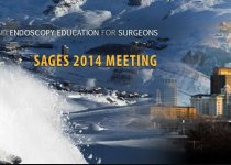 SAGES 2014 Meeting