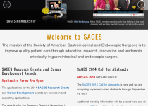 SAGES Mobile Site