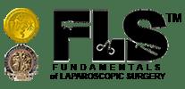 FLS Test