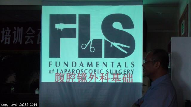 FLS slide in Chinese