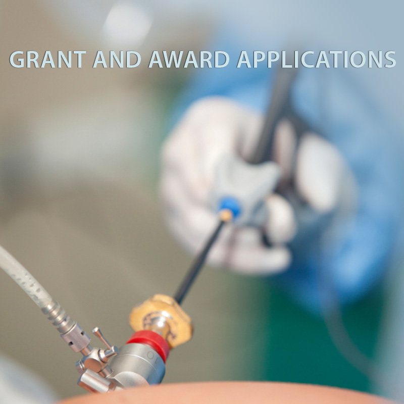 Grant Guidelines and Submission