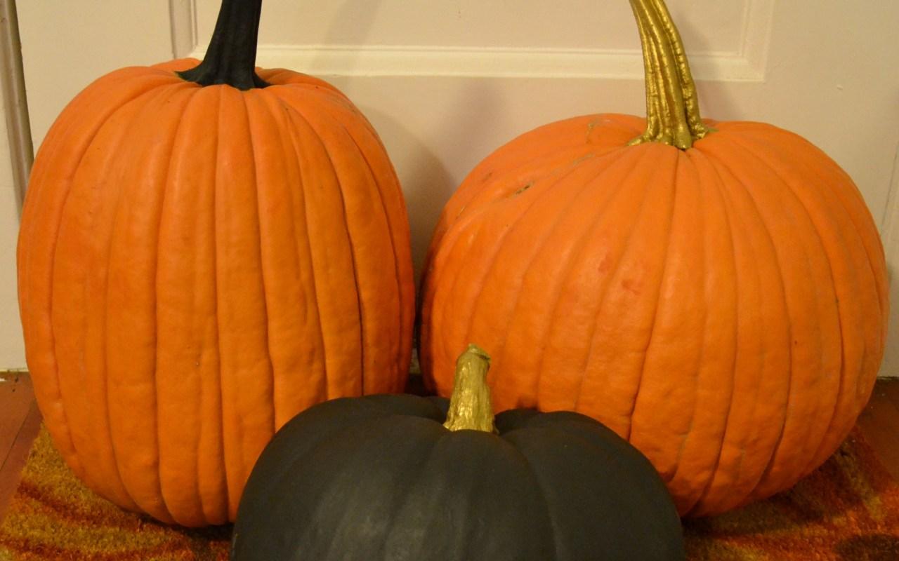 Pumpkin Patches & Pumpkin painting