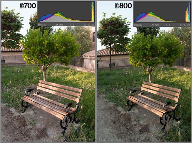 Nikon-D800-vs-D800-gamma-dinamica