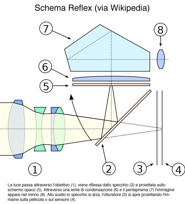 schema-reflex