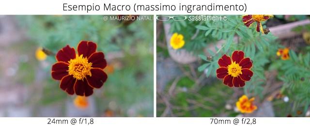 rx100m4-esempio-macro