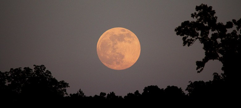 Luna di Fragola