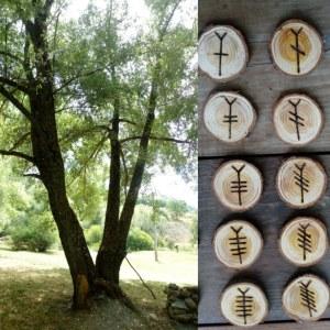 alberi_ogham