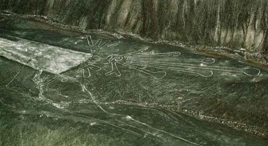 Nazca linee