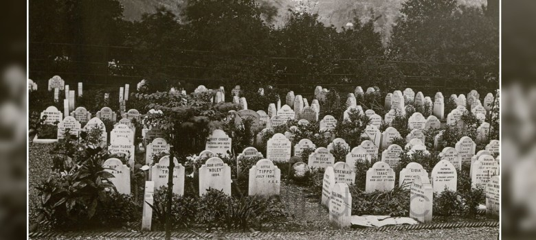 cimitero animali