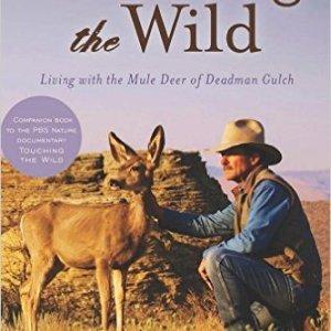 living with the mule deer sahalee off grid