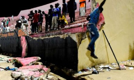 Eight People Die In Senegal Stadium Disaster