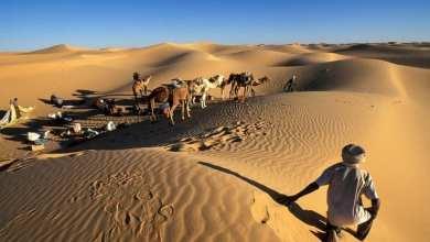 سياح غربيين وسط الصحراء الموريتانية - وكالات