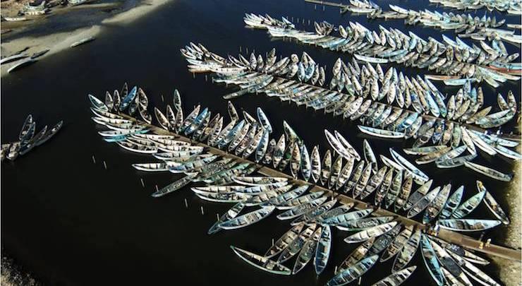 قوارب صيد تقليدي في نواذيبو