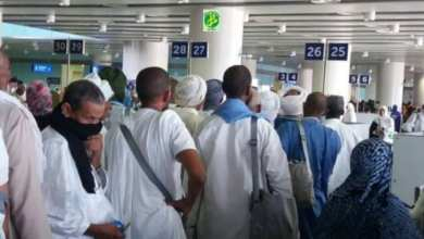Photo of الفوج الأول من حجاج موريتانيا يصل المدينة المنورة