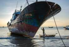 Photo of موريتانيا تزيد «الإتاوات» على سفن الصيد الأجنبية