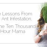 Guest Post: Life Lessons From An Ant Infestation, by The Ten Thousand Hour Mama