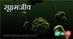 सूक्ष्मजीव का चित्र