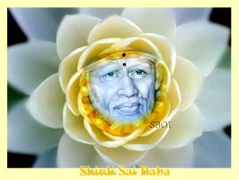 sai-baba-flower-lotus-wallpaper