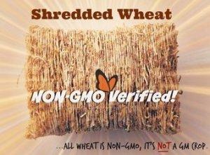 Non-GMO Project - non-gmo labelled wheat, all wheat is GMO FREE