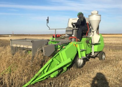 New Crop Varieties: The Journey from Lab to Field – Harvest