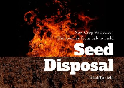 New Crop Varieties: The Journey from Lab to Field – Seed Disposal