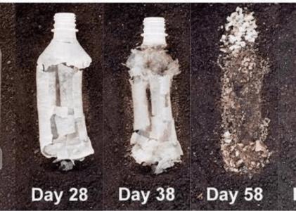 Single-Use Plastics: Is Hemp The Future?