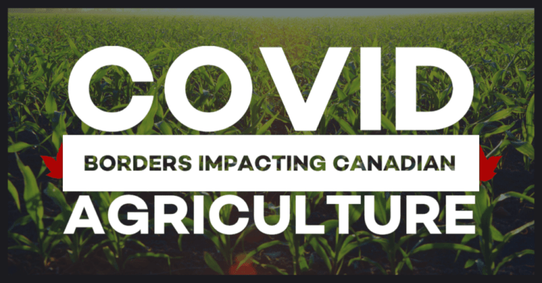 COVID Borders impacting Canadian Agriculture and farm labour