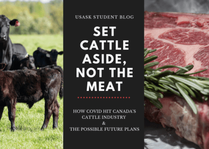 Set Cattle Aside, Not the Meat