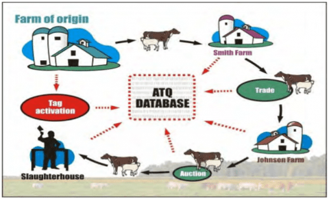 Livestock traceability in Canadian Agriculture
