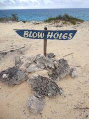 Blow Holes