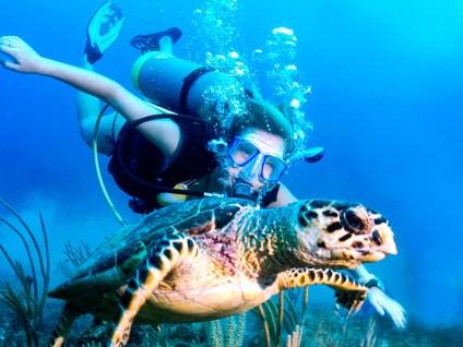 scuba_turtle_girl