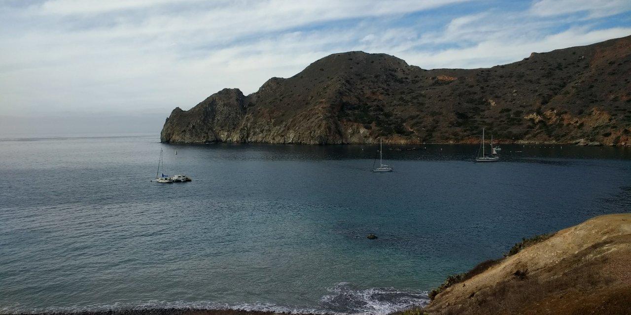 Bobbing around Santa Cruz Island