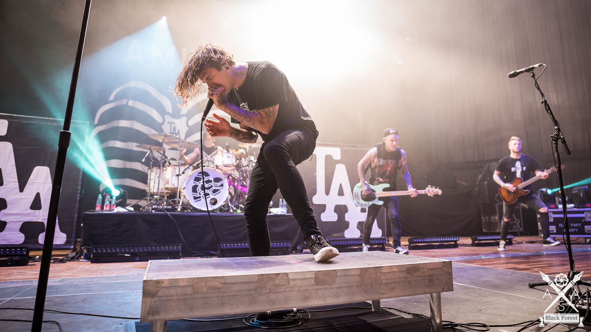 The Amity Affliction - Knockdown 2016 - Adrian Sailer