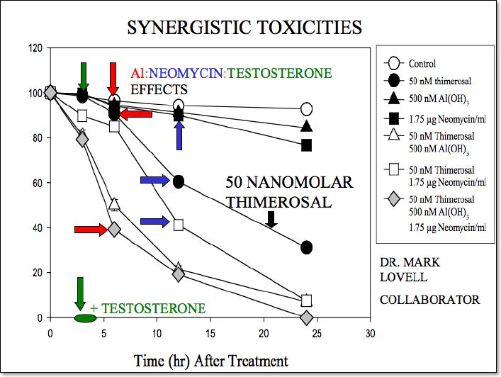 Synergistic toxicity of thimerosal aluminum neomycin testosterone
