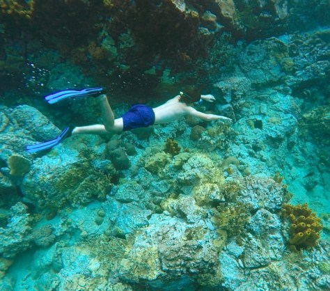 cousteau2