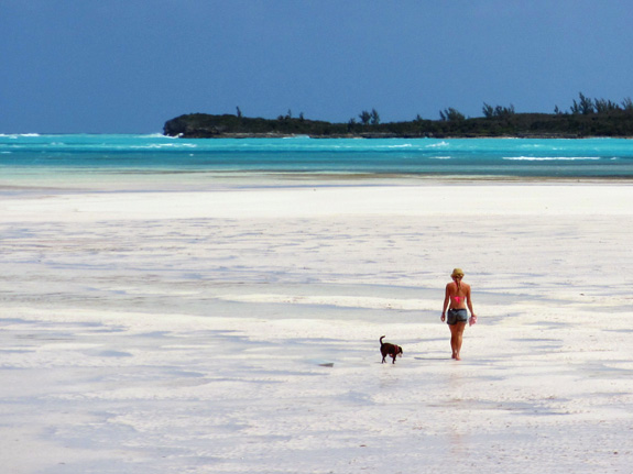 eleuthera_beach_low_tide