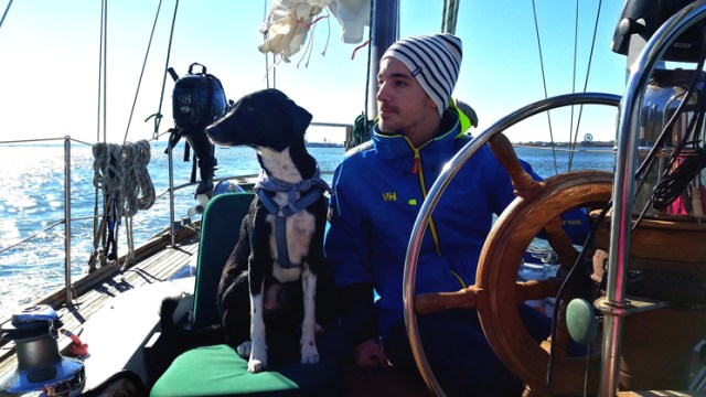 dog_helm_sailboat