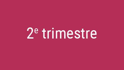 Trimestre 2