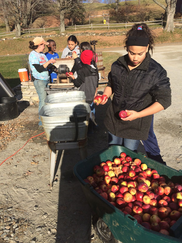 Making apple cider at a Vermont Dairy Farm