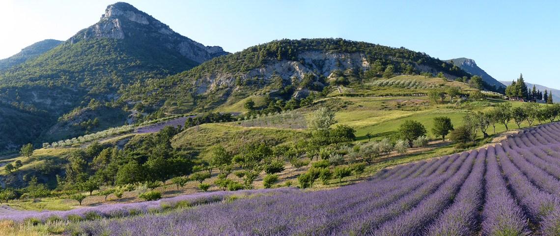 Parc Naturel de baronnies provençales