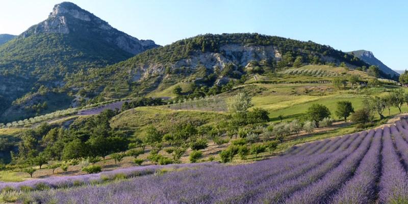Parc naturel des Baronnies Provençales